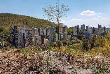 Foto Lote - Terreno à venda no Mangabeiras em Belo Horizonte - Imagem 01