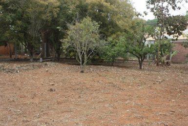Foto Lote em Condomínio à venda no Condados da Lagoa em Lagoa Santa - Imagem 01