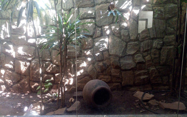 Foto Casa de 3 quartos à venda no Bandeirantes (Pampulha) em Belo Horizonte - Imagem