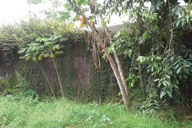 Foto Lote - Terreno de 3 quartos à venda no Itapoã em Belo Horizonte - Imagem 01