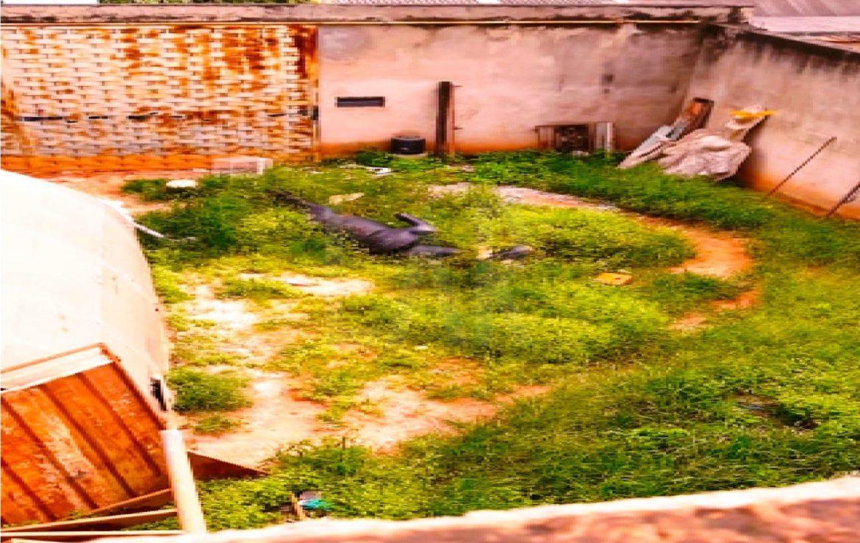 Foto Lote - Terreno para alugar  em Belo Horizonte - Imagem 05