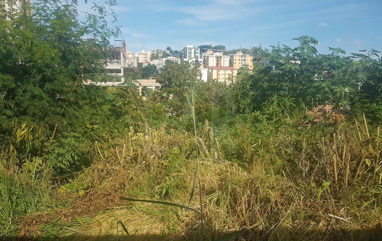 Foto Lote - Terreno à venda no Estoril em Belo Horizonte - Imagem 04
