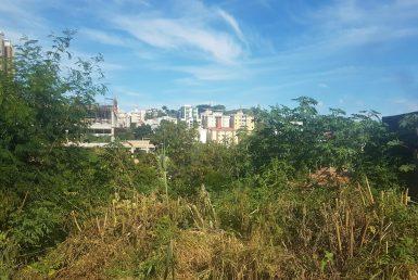 Foto Lote - Terreno à venda no Estoril em Belo Horizonte - Imagem 01